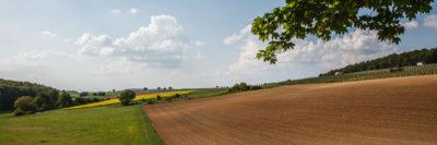 Gewann Inzerloch, Hasensprung ⋅ Walzbachtal-Jöhlingen