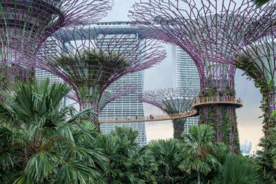 Gardens by the Bay ⋅ Singapur
