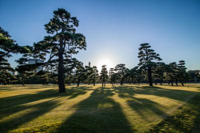 Kokyogaien Nat. Garden ⋅ Tokyo-Chiyoda