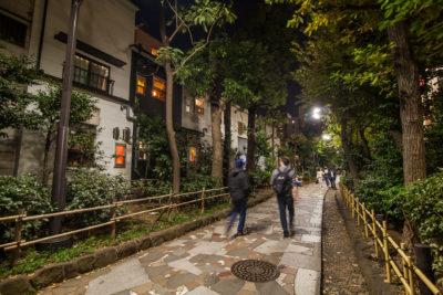 Four Seasons Path ⋅ Tokyo-Shinjuku