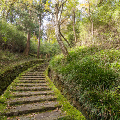 Stairs of 200 Steps ⋅ Onshi-Hakone Park